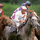 jockeys and racing horses